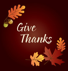 give thanks thanksgiving graphic with acorns and l vector image vector image