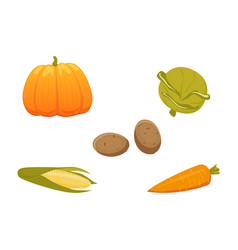 harvest vegetables set isolated vector image