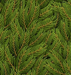Spruce branch background fir branch seamless vector