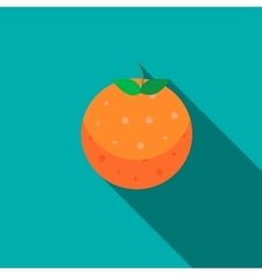 Orange fruit icon flat style vector