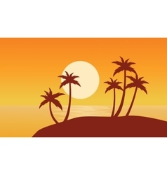 At sunset palm on seaside scenery vector image