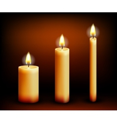 Realistic candles in different shapes vector