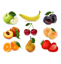 icons set fruits and berries vector image vector image
