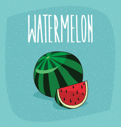 Isolated ripe watermelon fruit and cut piece vector