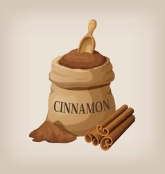 Powder of cinnamon in a canvas bag and cinnamon vector