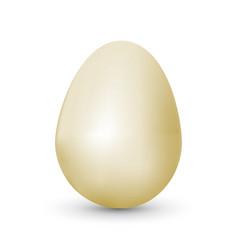 Single raster realistic egg vector