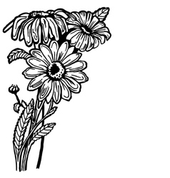 Daisy bush vector