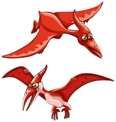 Two red flying dinosaurs vector image