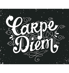 Carpe diem quote hand drawn vintage print with vector