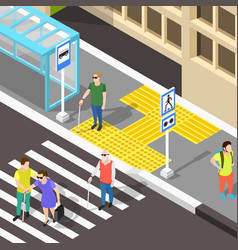 blind crosswalk paving background vector image vector image