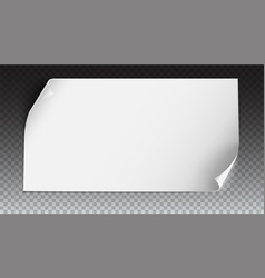 curved paper banner on colored background vector image vector image