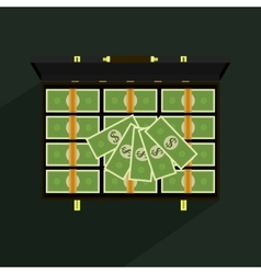 Money in suitcase vector image