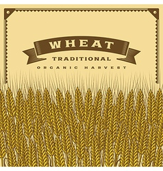 Retro wheat harvest card vector
