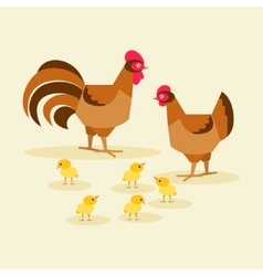 Chicken family bird vector image