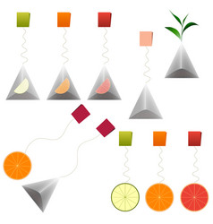 Green black tea bags fruit tea clipart set vector