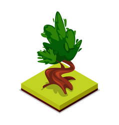 green chestnut tree isometric 3d icon vector image vector image