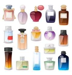 Perfume bottle set vector image