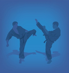 Two men are engaged in karate on a blue background vector image