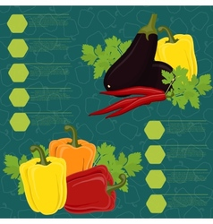 Vegetables infographic on the seamless background vector