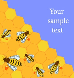 Bees and honeycombs vector