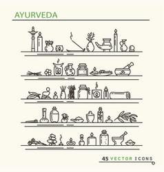 Ayurvedic supplies icons vector