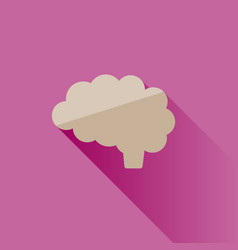 brain icon with shade on pink background vector image
