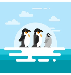 flat style of penguins on the glacier vector image vector image