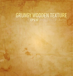 Grungy Wooden Texture vector image