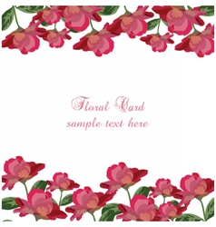 Roses floral card rose flowers banner vector