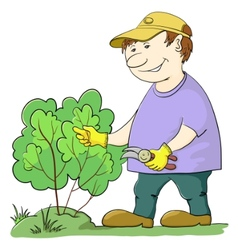 Gardener cuts a bush vector