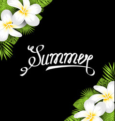 Summer border with frangipani flowers and green vector
