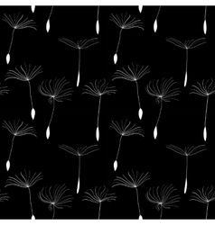 White dandelion seeds on black background vector