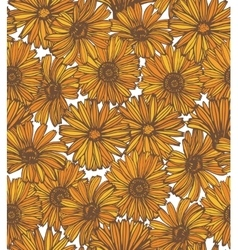 Hand drawn calendula background vector