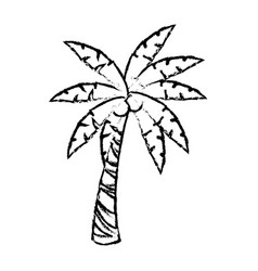 palm tree tropical plant natural image vector image vector image