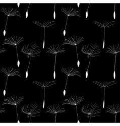 White dandelion seeds on black background vector
