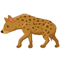 Cartoon of a hyena vector