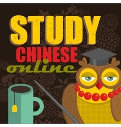 Study Chinese on-line banner for the web school vector image