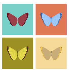 Assembly flat insect butterfly vector