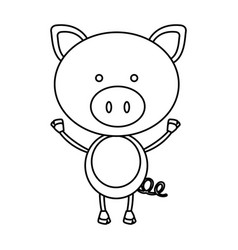 Figure teddy pig icon vector