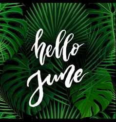 hello june brush lettering vector image vector image