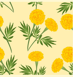 yellow marigold on ivory beige background vector image