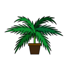 Potted palm tree plant natural decoration interior vector