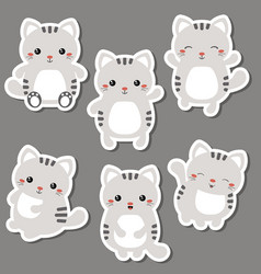 set of cute cats set of cute cats vector image