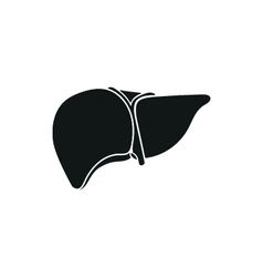 Human liver on white vector