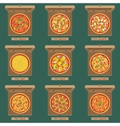 Pizzas in the opened cardboard boxes vector