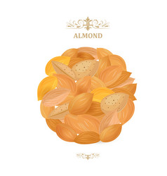 banner with pile of delicious almonds on white vector image vector image
