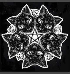 Black cat head portrait madnala moon pentagram vector