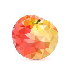 low-poly triangular apple 3d apple vector image