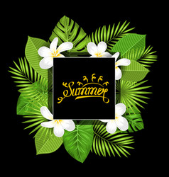 summer card with frangipani flowers and green vector image vector image