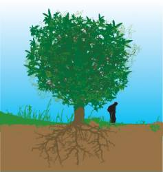 tree and roots vector image vector image